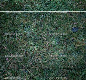 long-grass-texture-preview