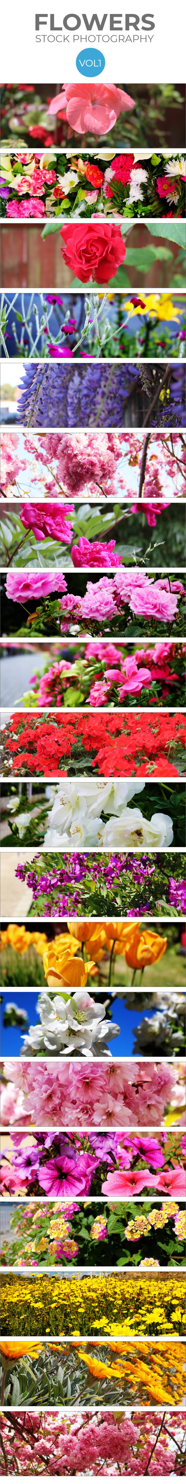stock-flowers-vol-1